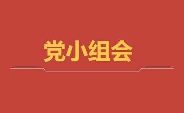 公司第二党支部第一党小组召开线上党小组学习会议